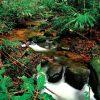 1-Sarawak-Borneo-Adventure-Kuching-Kubah2-498×500